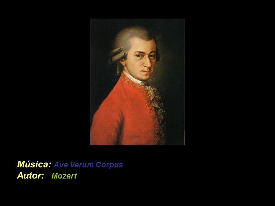 Música: Ave Verum Corpus