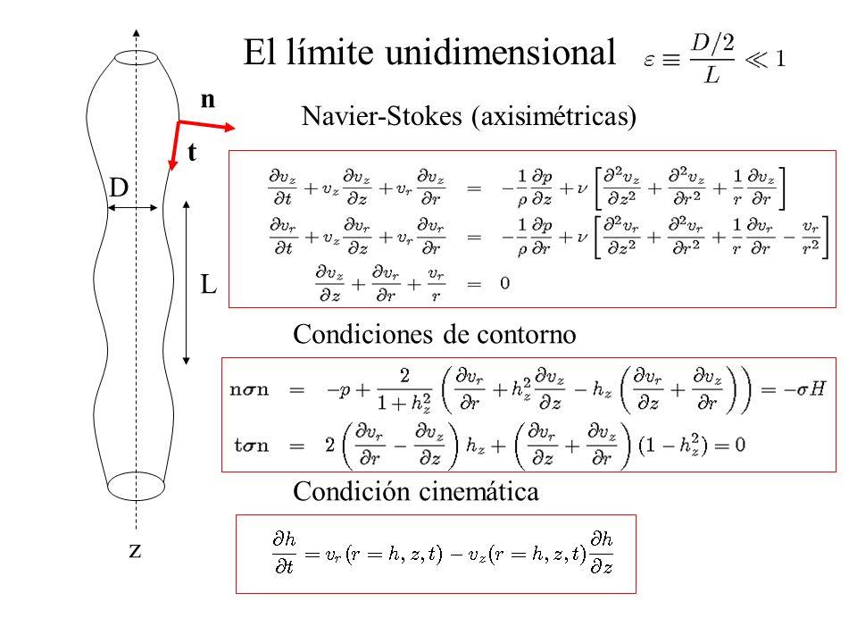 El límite unidimensional