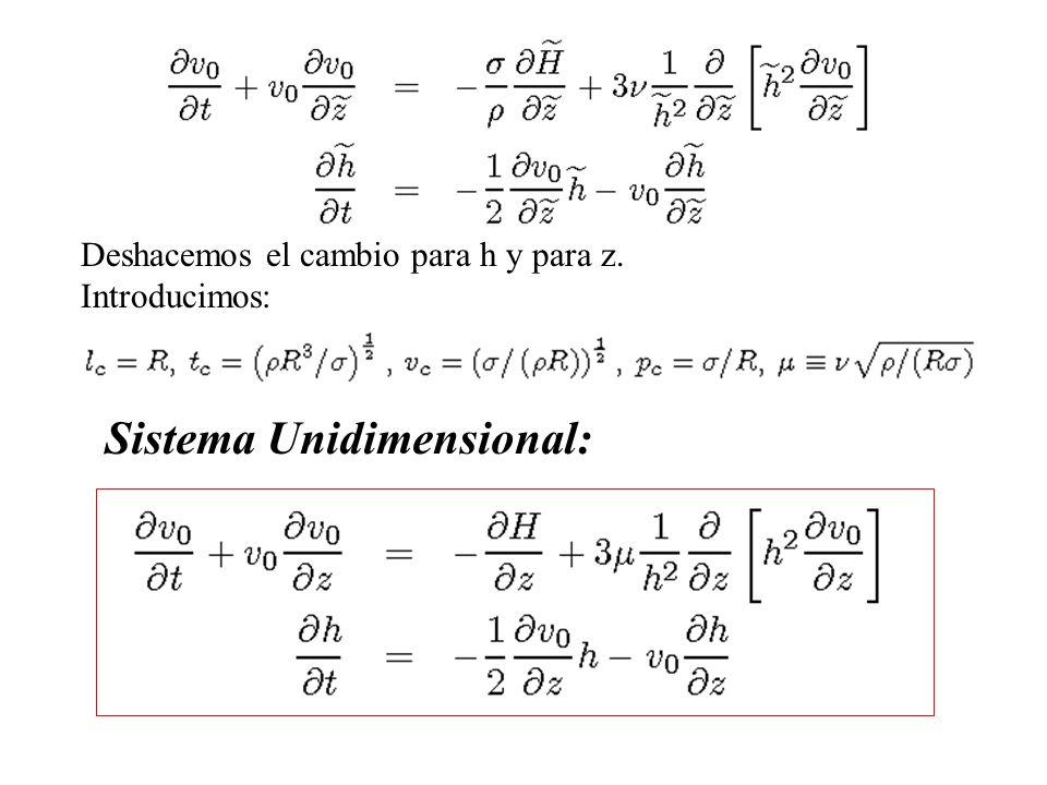 Sistema Unidimensional: