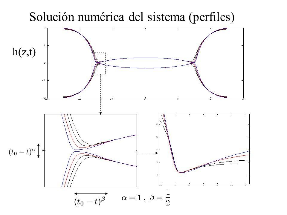 Solución numérica del sistema (perfiles)