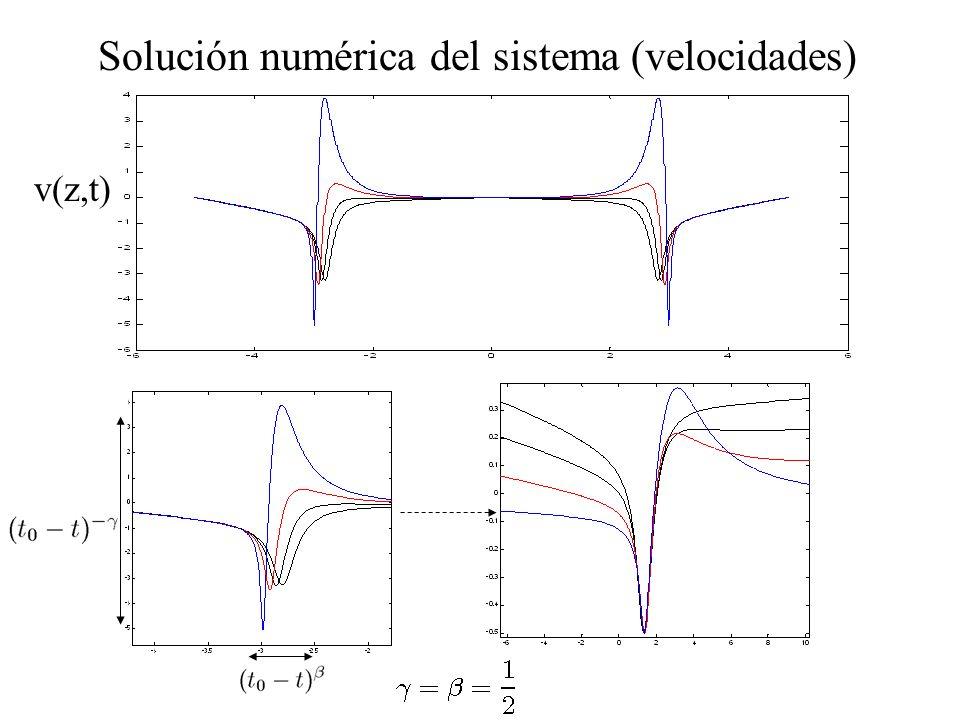 Solución numérica del sistema (velocidades)