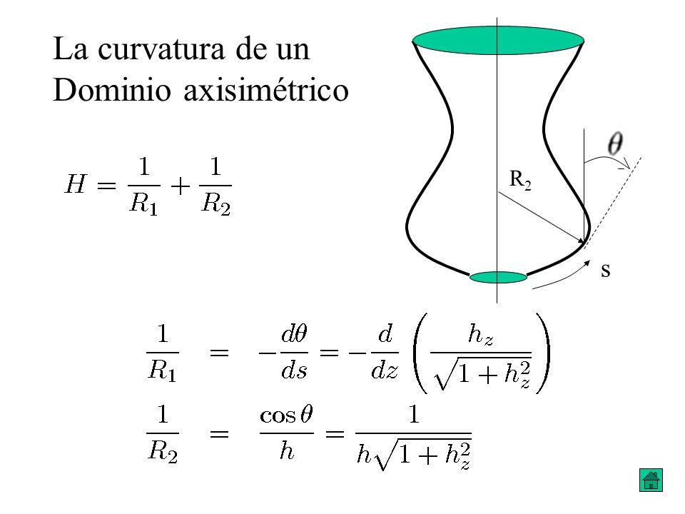 La curvatura de un Dominio axisimétrico R2 s