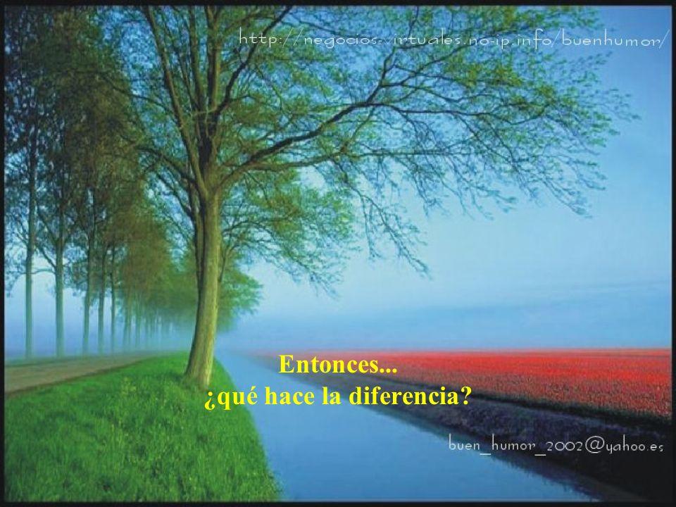 Entonces... ¿qué hace la diferencia