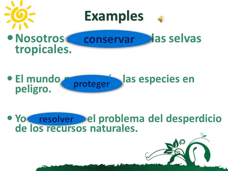 Examples Nosotros conservaremos las selvas tropicales. conservar
