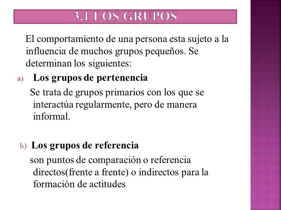 3.1 Los grupos El comportamiento de una persona esta sujeto a la influencia de muchos grupos pequeños. Se determinan los siguientes: