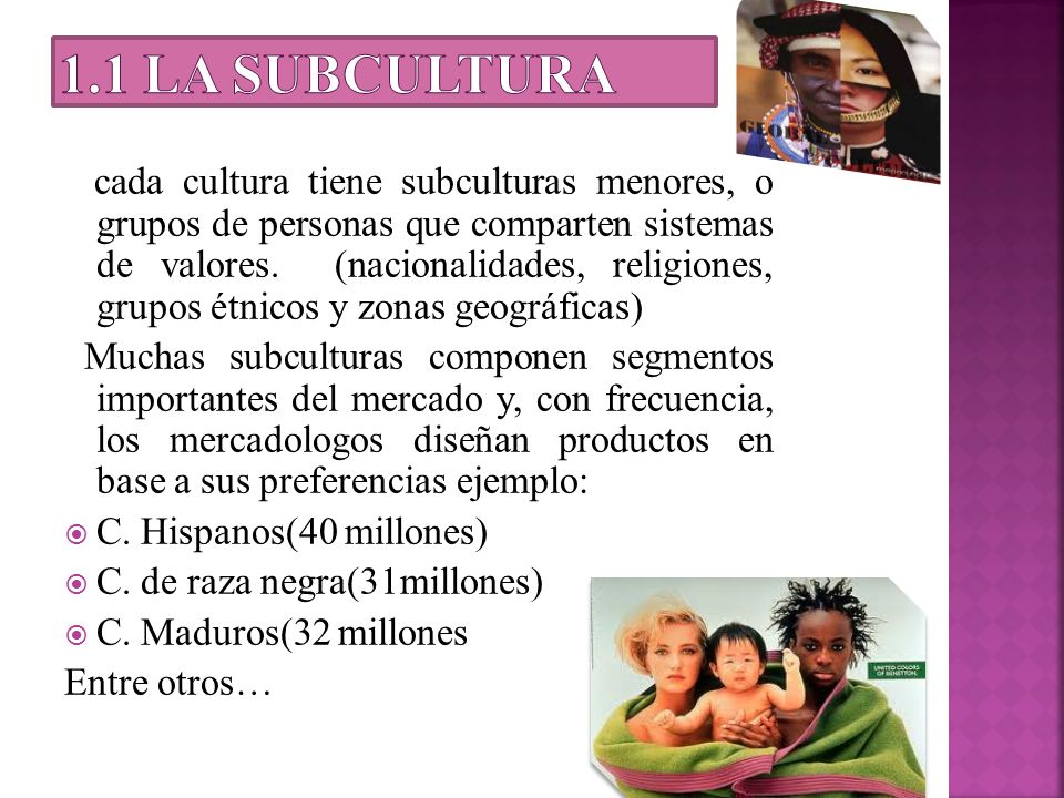 1.1 La subcultura