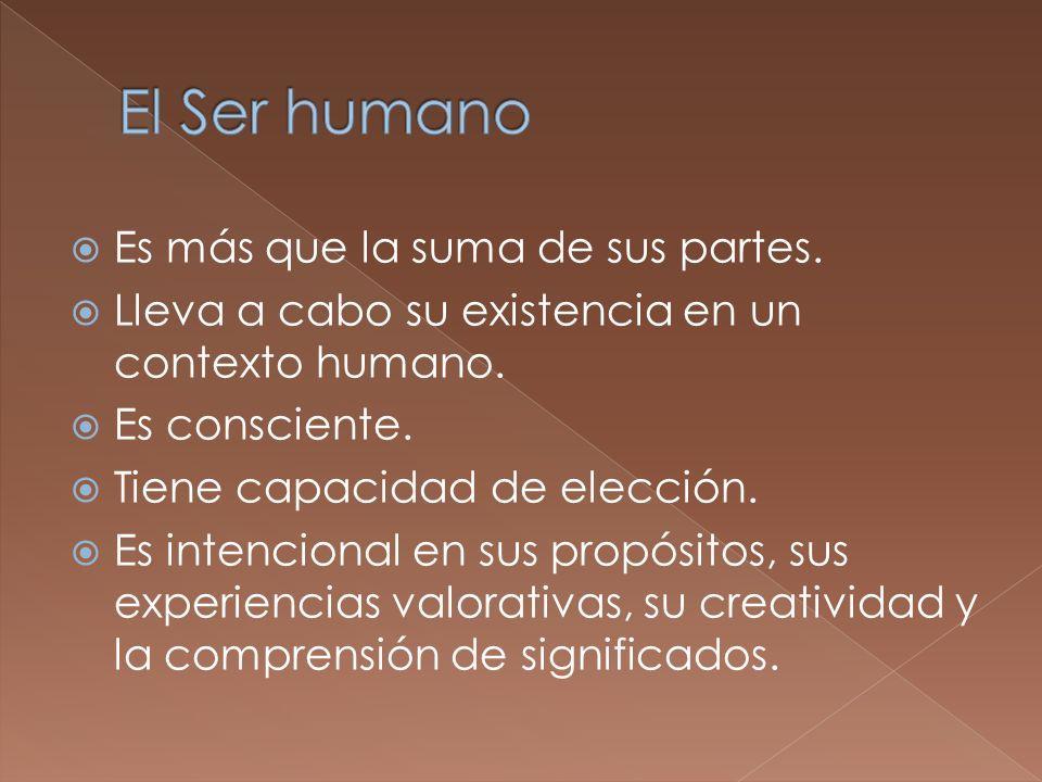 El Ser humano Es más que la suma de sus partes.