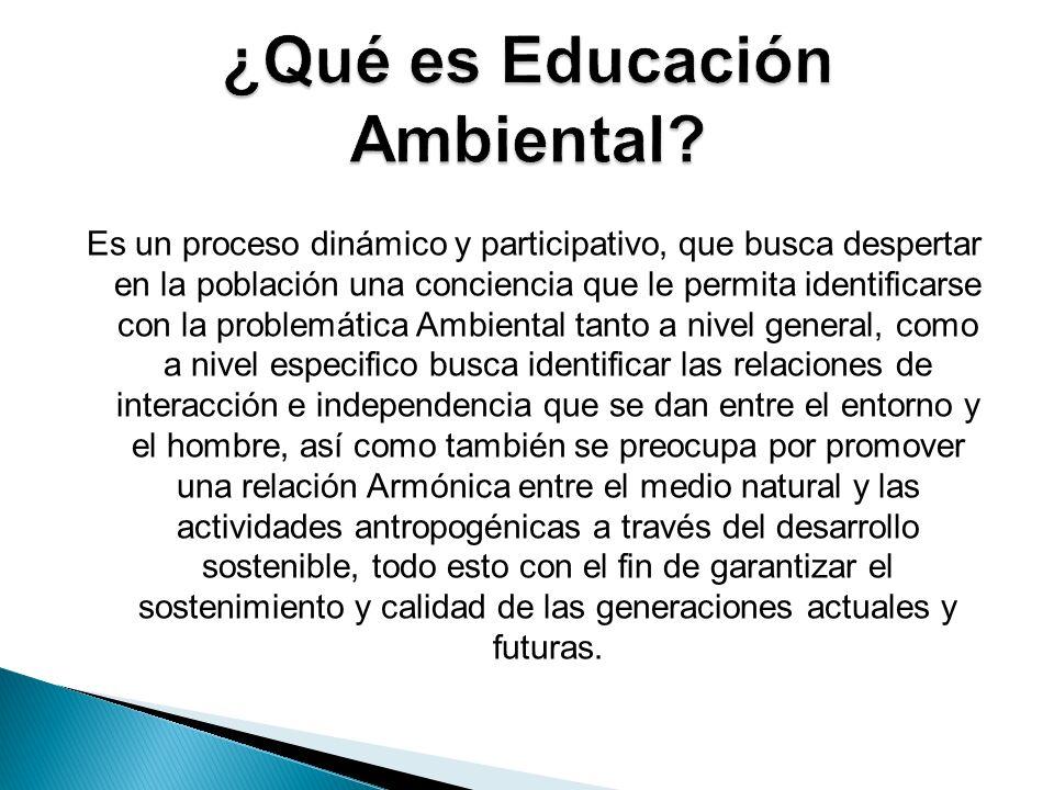 ¿Qué es Educación Ambiental