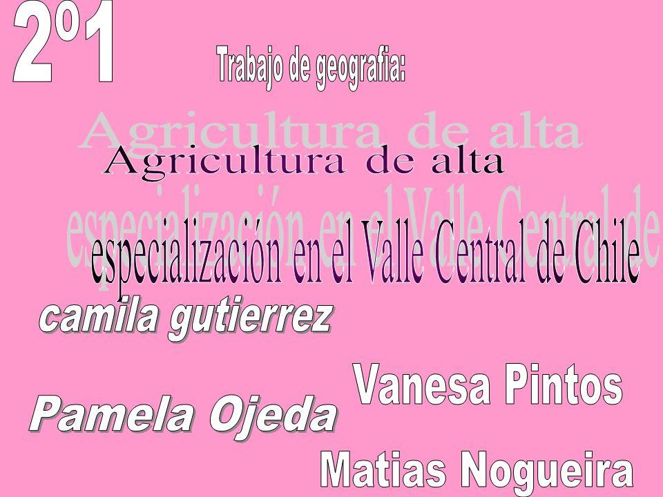 especialización en el Valle Central de Chile