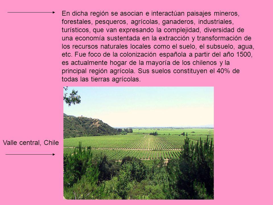 En dicha región se asocian e interactúan paisajes mineros, forestales, pesqueros, agrícolas, ganaderos, industriales, turísticos, que van expresando la complejidad, diversidad de una economía sustentada en la extracción y transformación de los recursos naturales locales como el suelo, el subsuelo, agua, etc. Fue foco de la colonización española a partir del año 1500, es actualmente hogar de la mayoría de los chilenos y la principal región agrícola. Sus suelos constituyen el 40% de todas las tierras agrícolas.