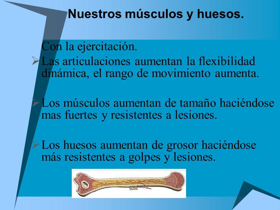 Nuestros músculos y huesos.