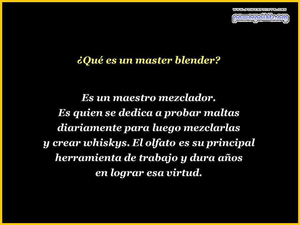 ¿Qué es un master blender