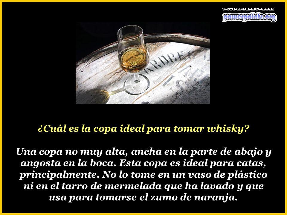 ¿Cuál es la copa ideal para tomar whisky