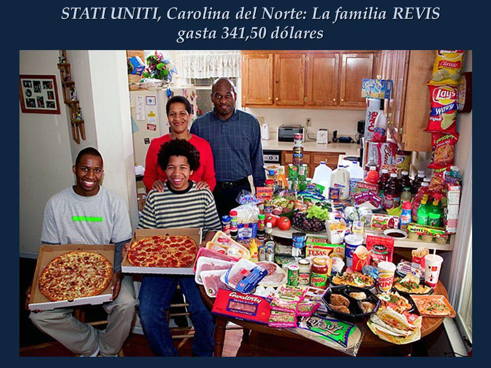 STATI UNITI, Carolina del Norte: La familia REVIS gasta 341,50 dólares