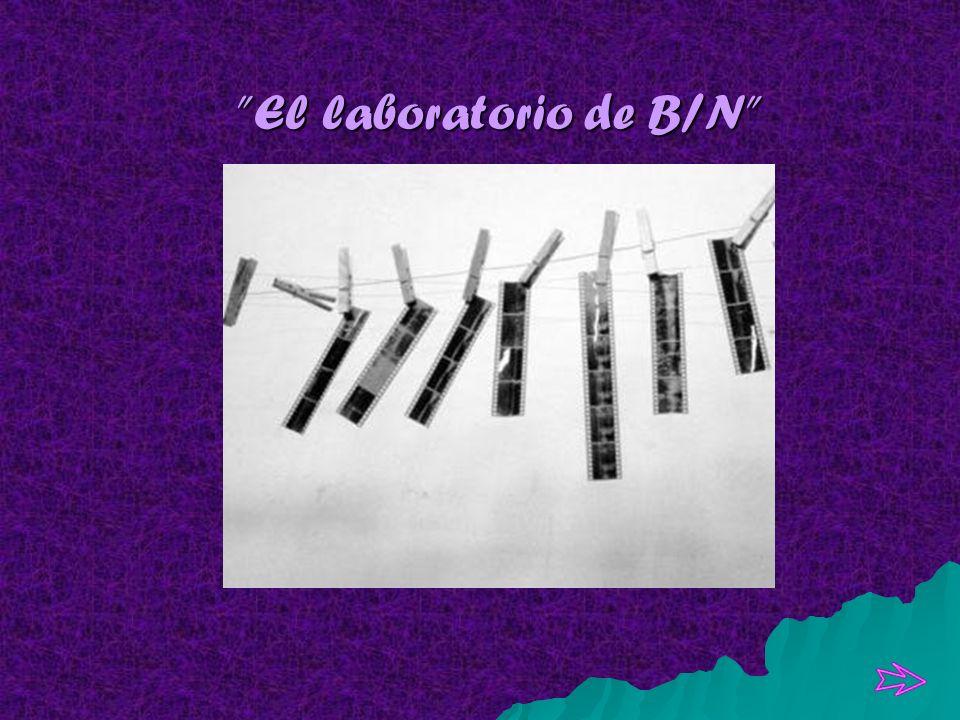 El laboratorio de B/N