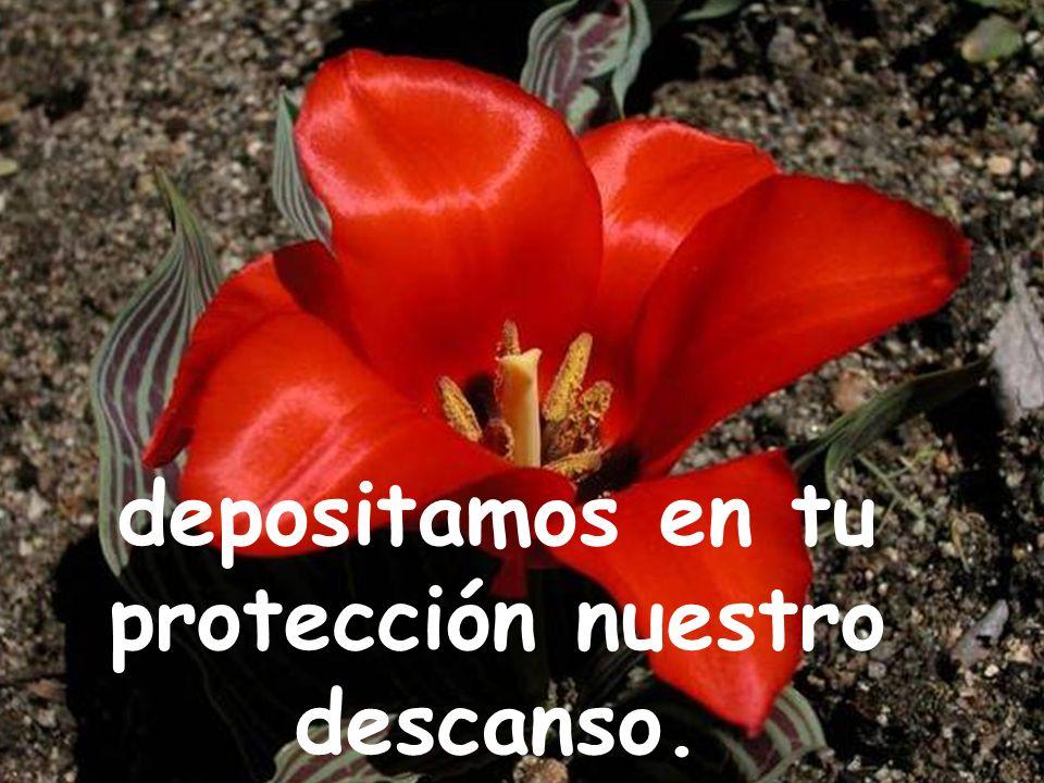 depositamos en tu protección nuestro descanso.