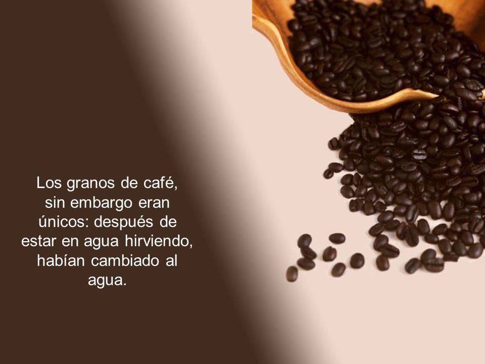 Los granos de café, sin embargo eran únicos: después de estar en agua hirviendo, habían cambiado al agua.