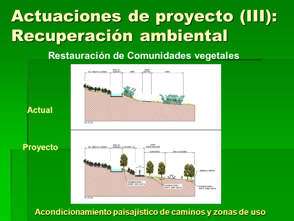 Actuaciones de proyecto (III): Recuperación ambiental