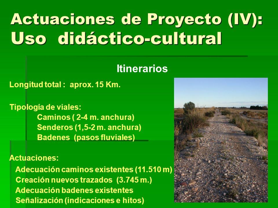 Actuaciones de Proyecto (IV): Uso didáctico-cultural