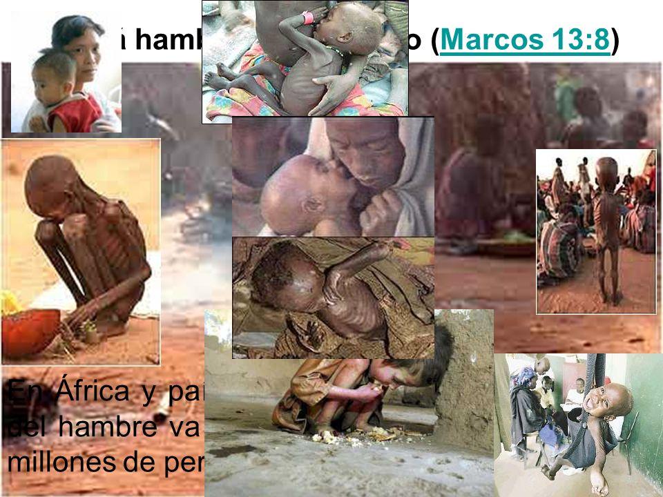 Habrá hambre en el mundo (Marcos 13:8)