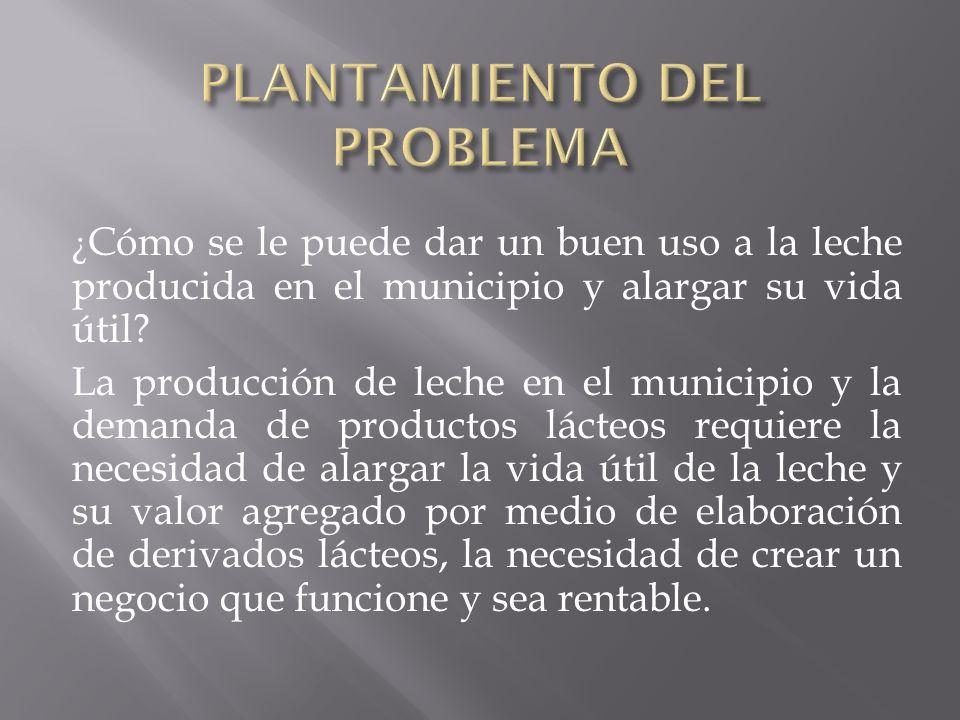 PLANTAMIENTO DEL PROBLEMA