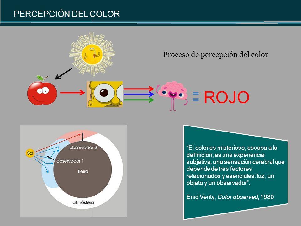 ROJO PERCEPCIÓN DEL COLOR Proceso de percepción del color