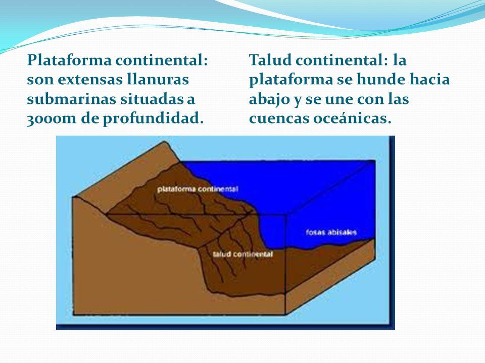Plataforma continental: son extensas llanuras submarinas situadas a 3000m de profundidad.