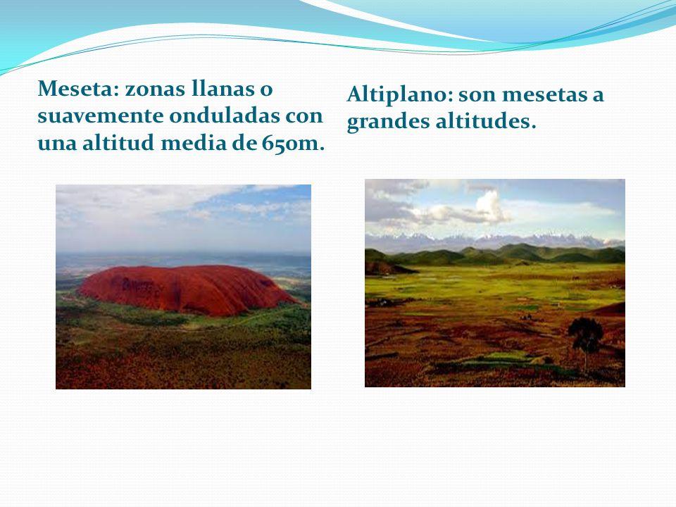 Altiplano: son mesetas a grandes altitudes.