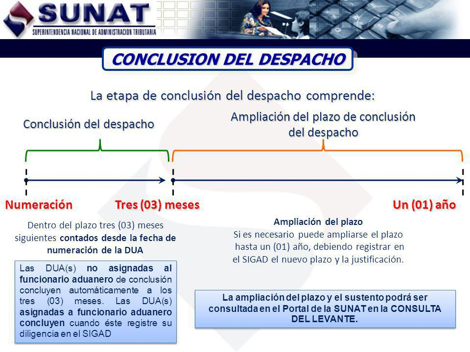 CONCLUSION DEL DESPACHO