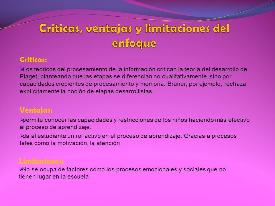 Criticas, ventajas y limitaciones del enfoque