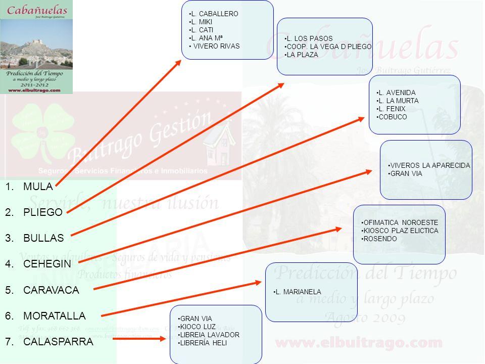 MULA PLIEGO BULLAS CEHEGIN CARAVACA MORATALLA CALASPARRA L. CABALLERO