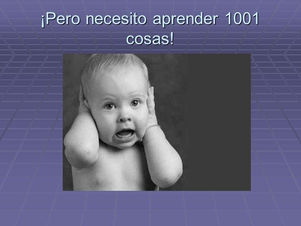 ¡Pero necesito aprender 1001 cosas!