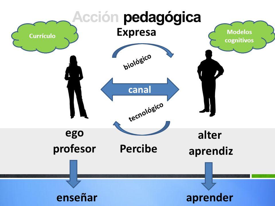 Acción pedagógica Expresa ego alter profesor Percibe aprendiz enseñar