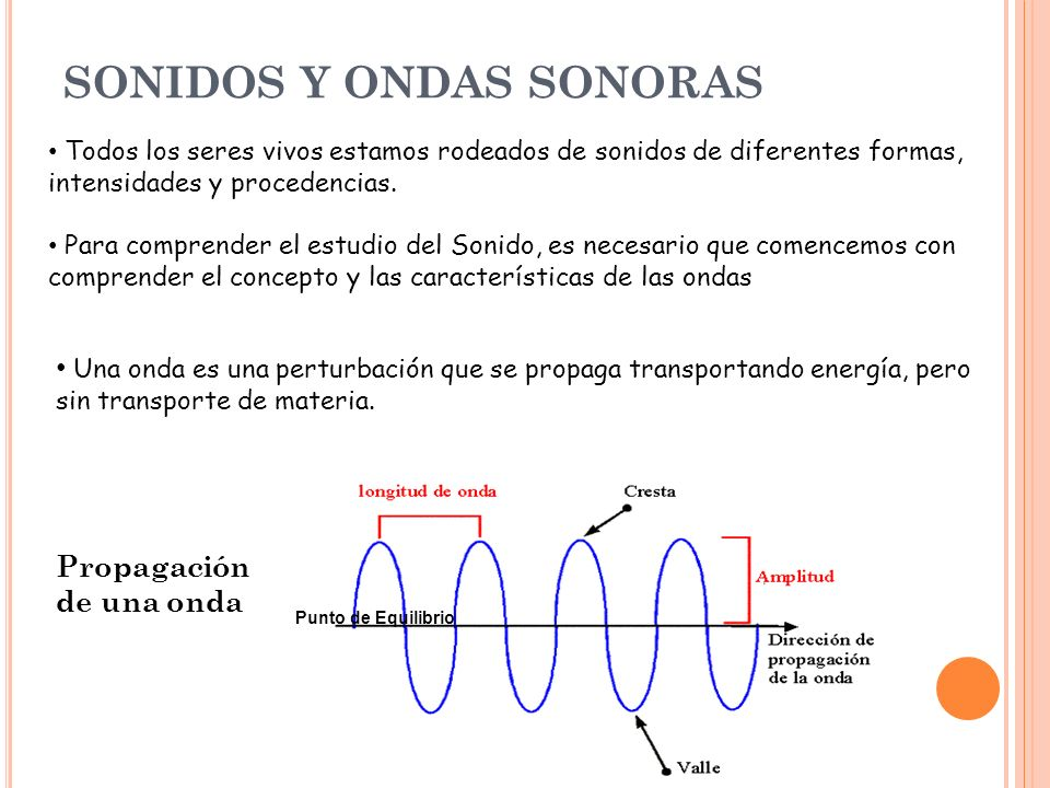 SONIDOS Y ONDAS SONORAS
