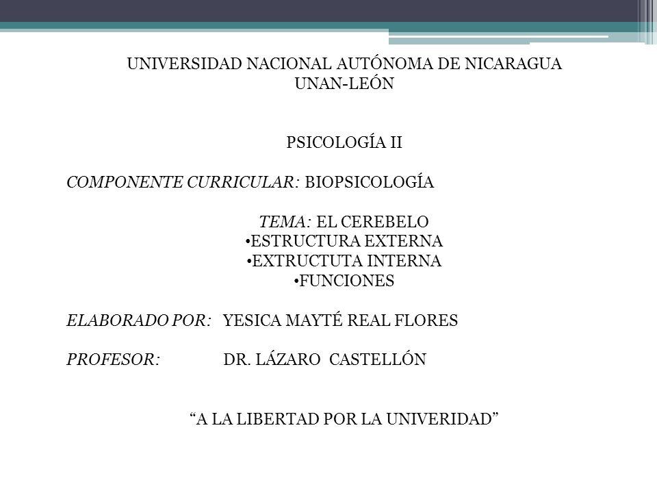 UNIVERSIDAD NACIONAL AUTÓNOMA DE NICARAGUA UNAN-LEÓN