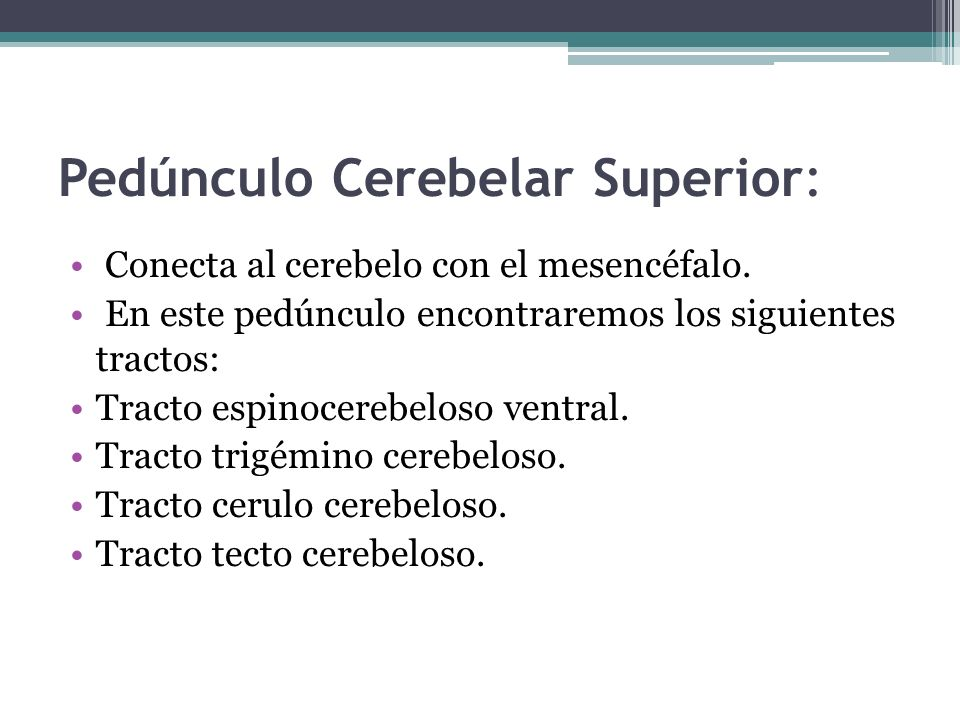 Pedúnculo Cerebelar Superior: