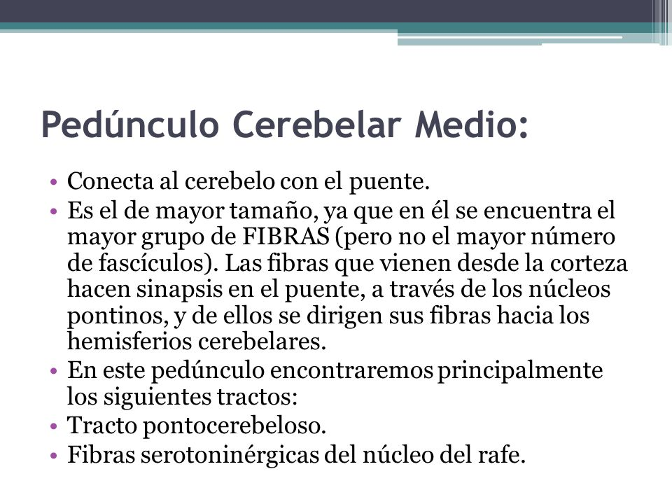 Pedúnculo Cerebelar Medio: