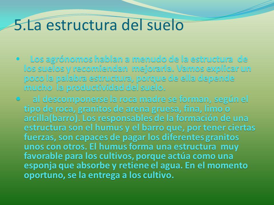 5.La estructura del suelo