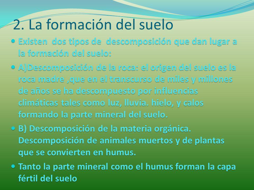 2. La formación del suelo Existen dos tipos de descomposición que dan lugar a la formación del suelo: