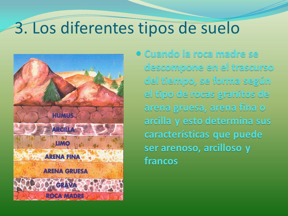 El suelo es materia y es vida ppt descargar for Suelos y tipos de suelos