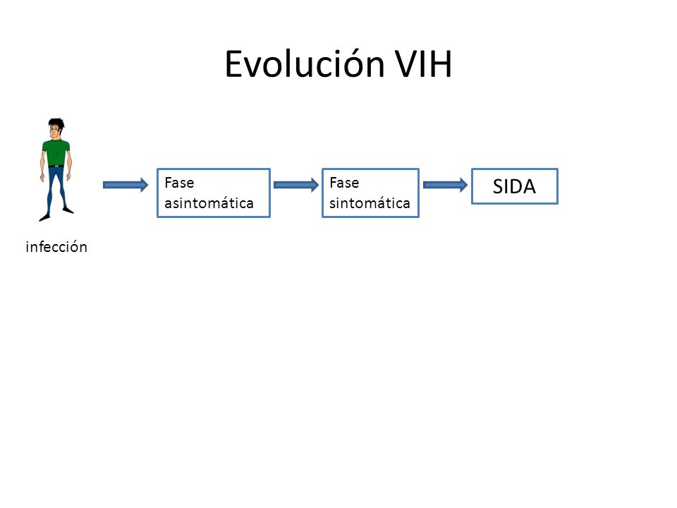 Evolución VIH Fase asintomática Fase sintomática SIDA infección