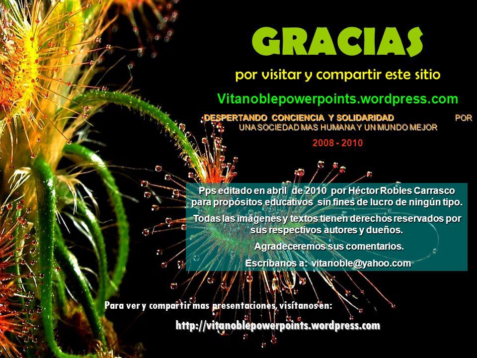 Agradeceremos sus comentarios. Escríbanos a: vitanoble@yahoo.com