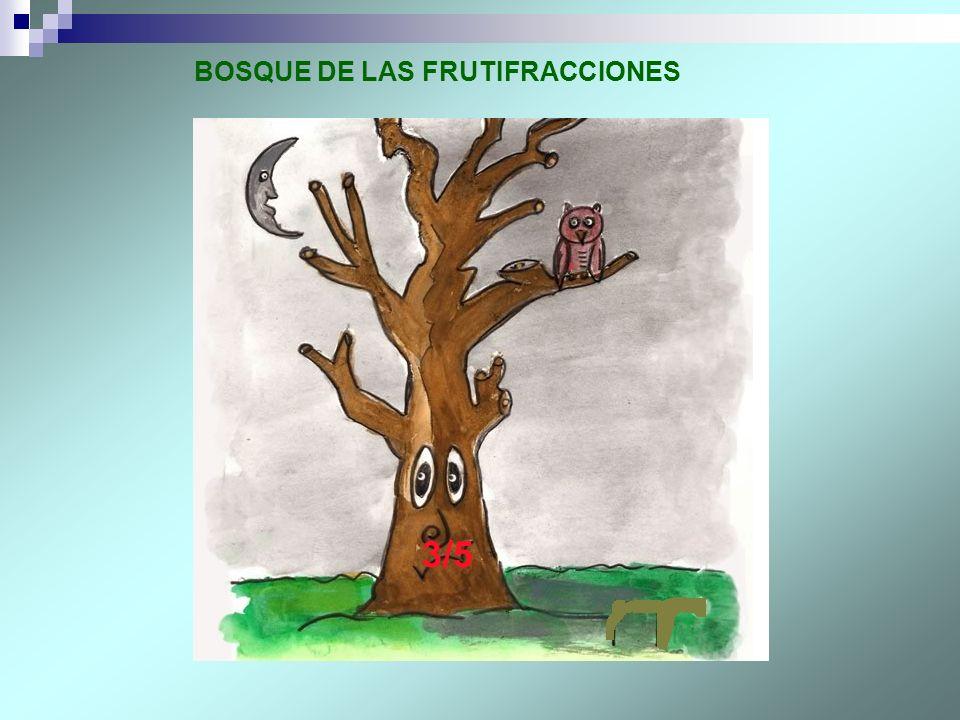 BOSQUE DE LAS FRUTIFRACCIONES