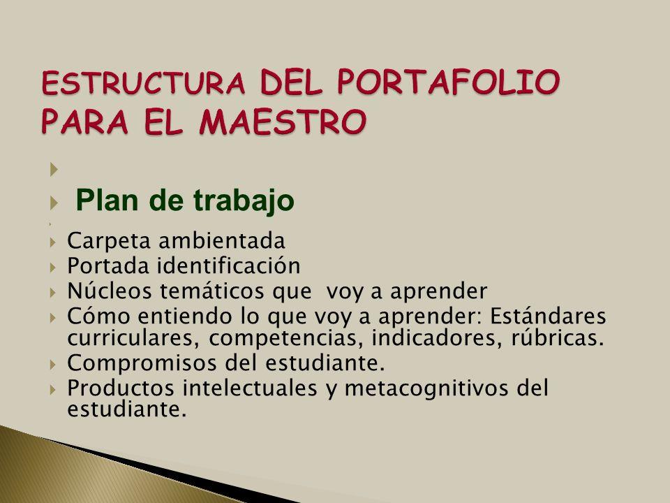 ESTRUCTURA DEL PORTAFOLIO PARA EL MAESTRO