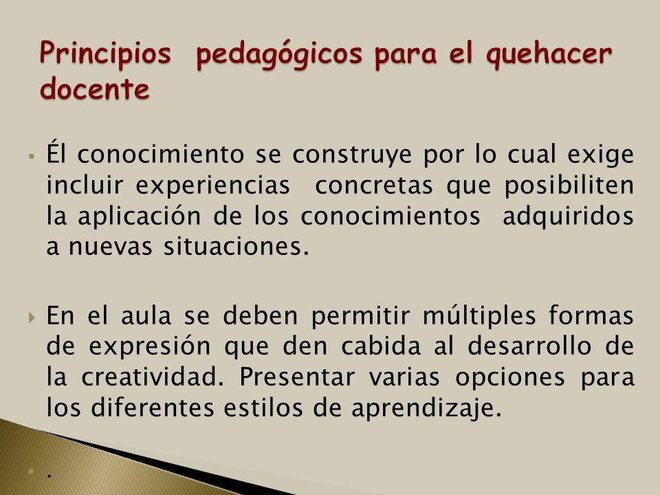 Principios pedagógicos para el quehacer docente