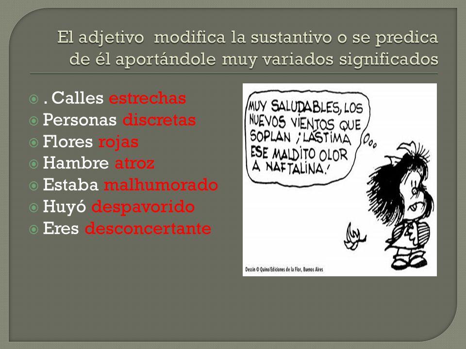 El adjetivo modifica la sustantivo o se predica de él aportándole muy variados significados