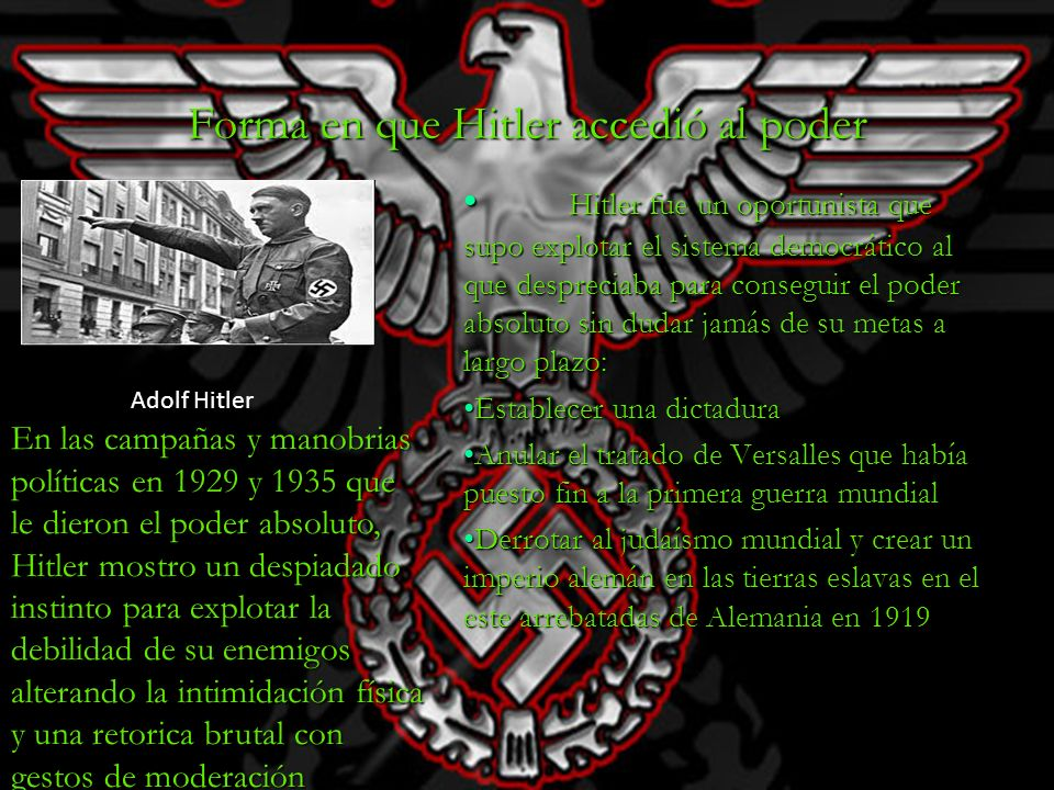 Forma en que Hitler accedió al poder