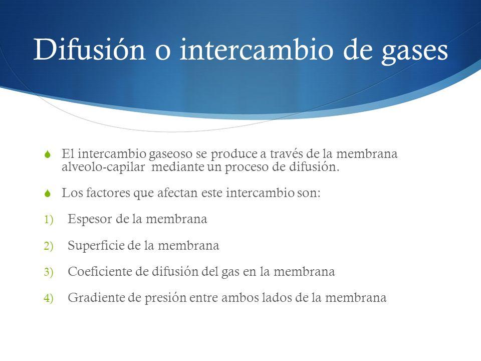 Difusión o intercambio de gases