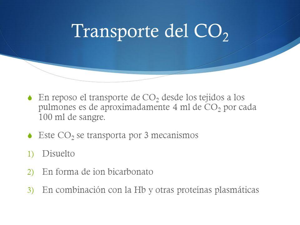 Transporte del CO2 En reposo el transporte de CO2 desde los tejidos a los pulmones es de aproximadamente 4 ml de CO2 por cada 100 ml de sangre.