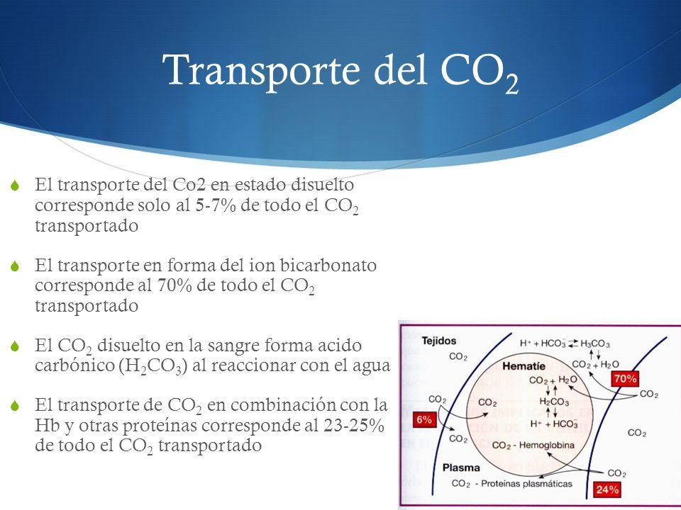 Transporte del CO2 El transporte del Co2 en estado disuelto corresponde solo al 5-7% de todo el CO2 transportado.